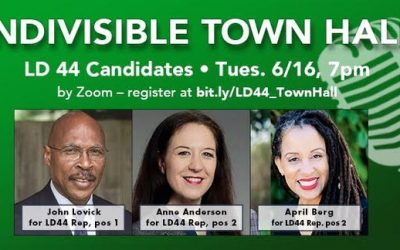 Tonight! Indivisible Town Hall LD44