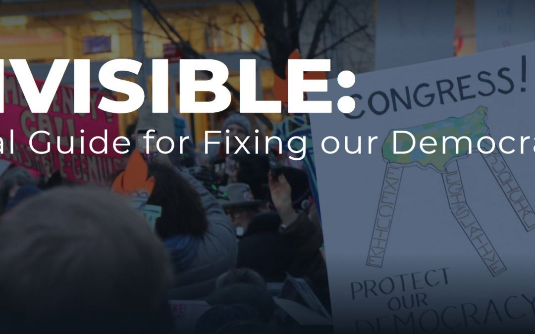 A New Guide for our Future from Indivisible