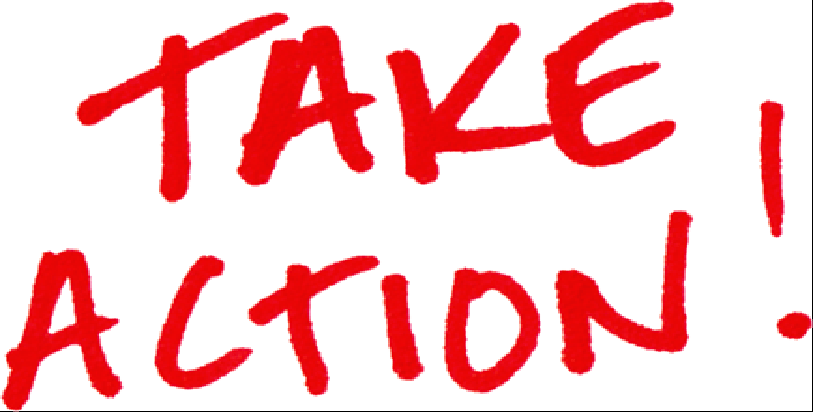 How-to Use the Take Action Network